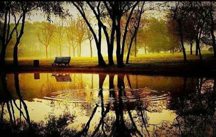 人生智慧:少言为贵,沉默是金 出自《论语》_图1-4