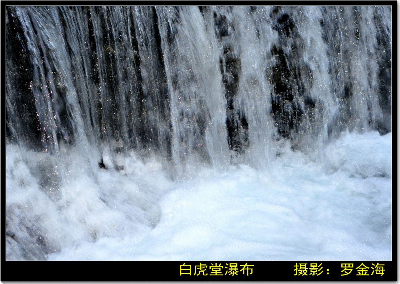 金仙寺游记·七律(上)_图1-27