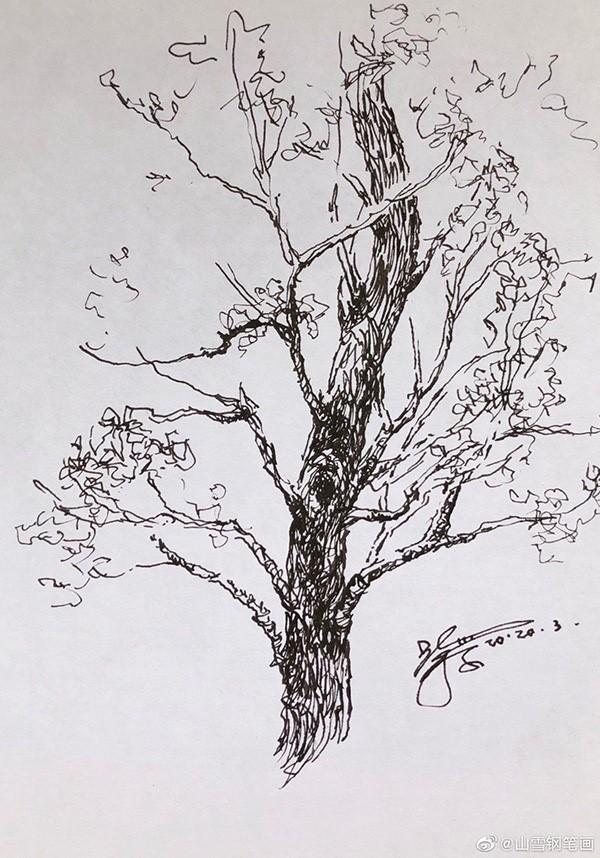 山雪钢笔速写——2020年1月至5月随手采撷_图1-34