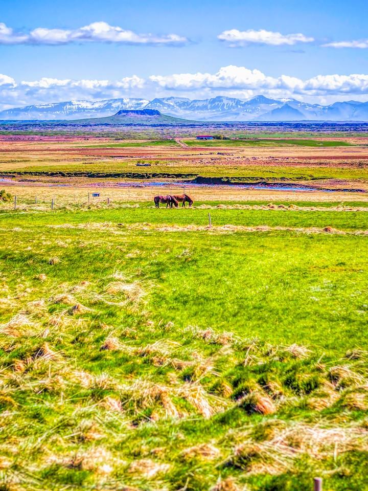 冰岛风采,沿着视线_图1-34