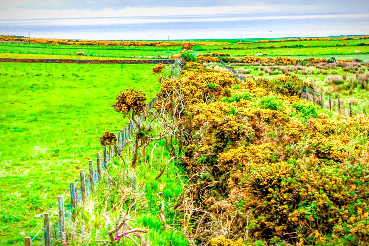 苏格兰美景,景色迷人_图1-21