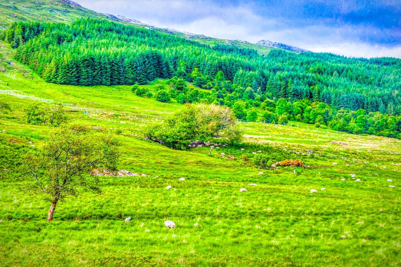 苏格兰美景,景色迷人_图1-18