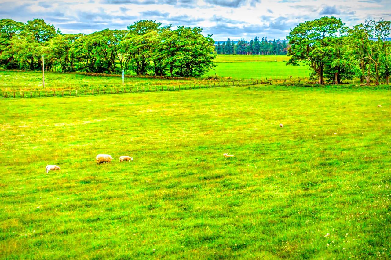 苏格兰美景,景色迷人_图1-6