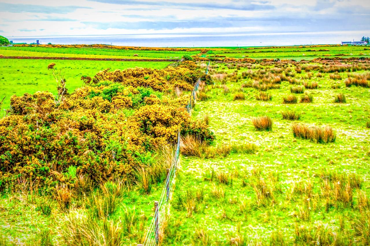苏格兰美景,景色迷人_图1-8