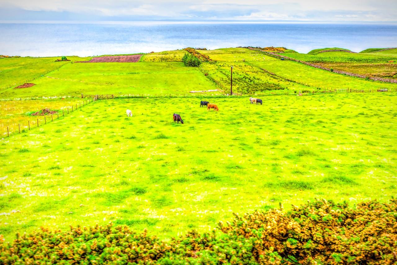 苏格兰美景,景色迷人_图1-16