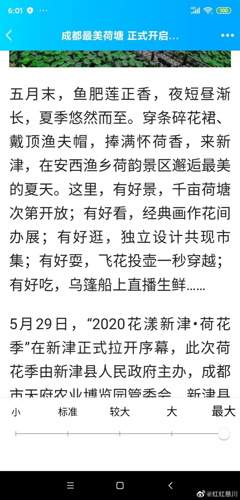 2020年花样新津荷花季_图1-4