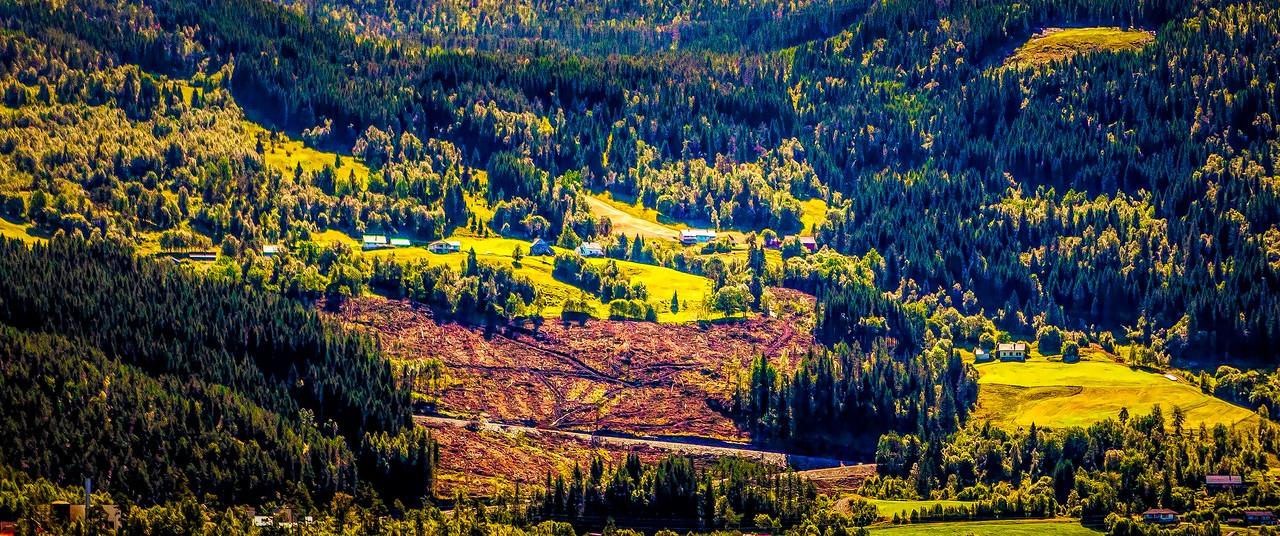 北欧风光,山坡上的家园_图1-33