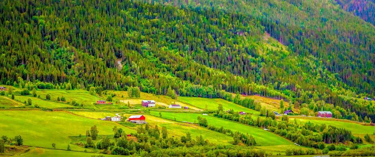 北欧风光,山坡上的家园_图1-35