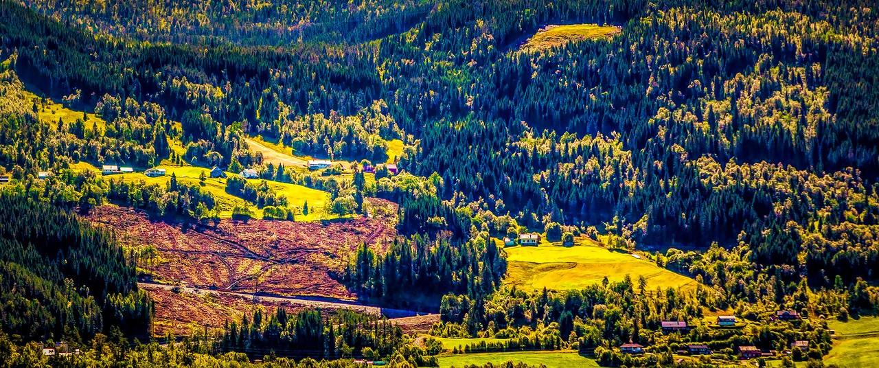 北欧风光,山坡上的家园_图1-44