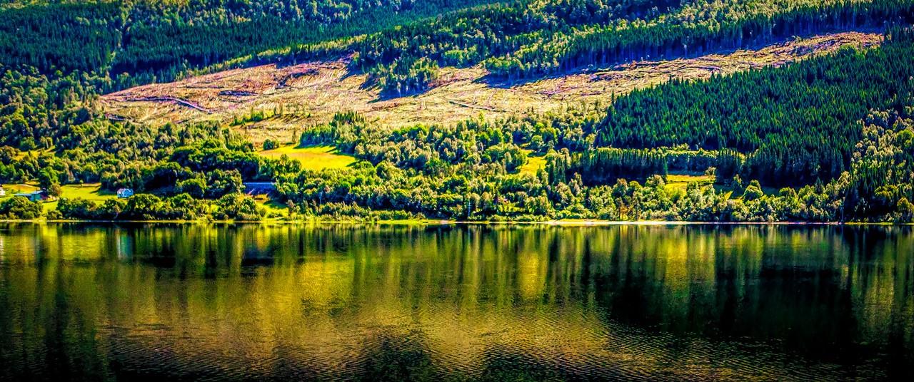 北欧风光,山坡上的家园_图1-6