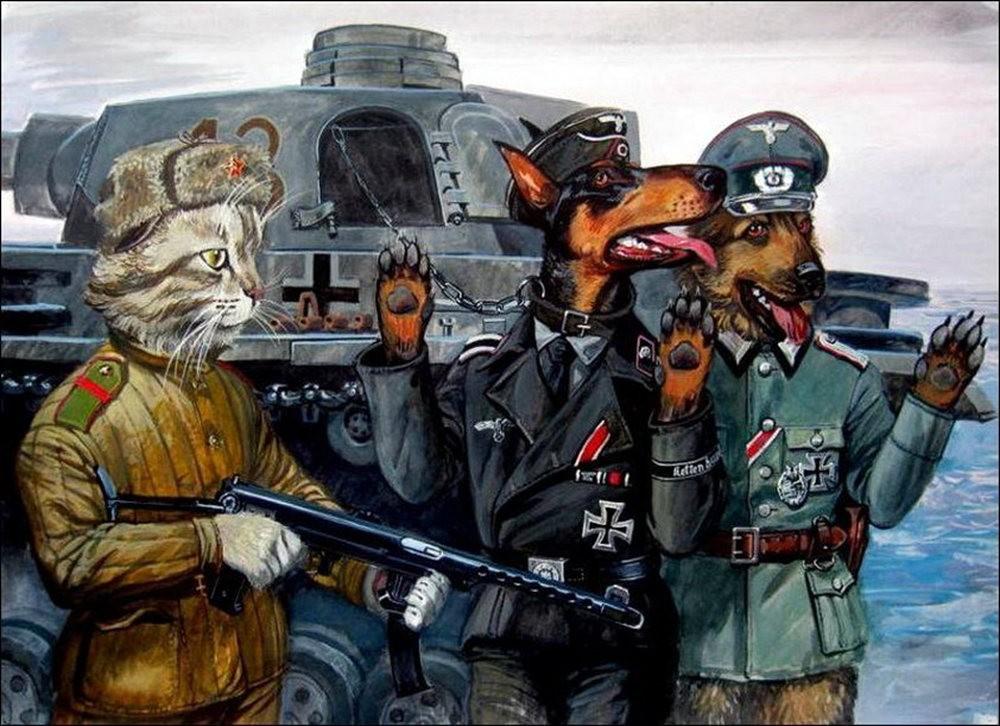 """画家亚历山大.扎瓦利的""""典型猫""""_图1-4"""