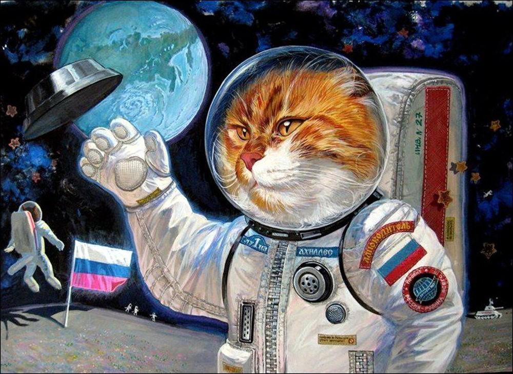"""画家亚历山大.扎瓦利的""""典型猫""""_图1-6"""