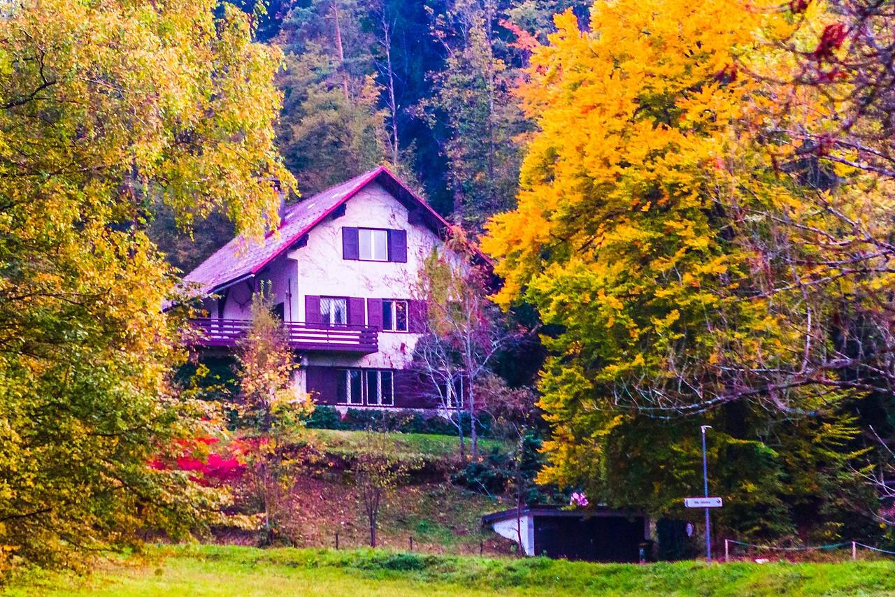 斯洛文尼亚布莱德湖(Lake Bled),湖边看景_图1-15