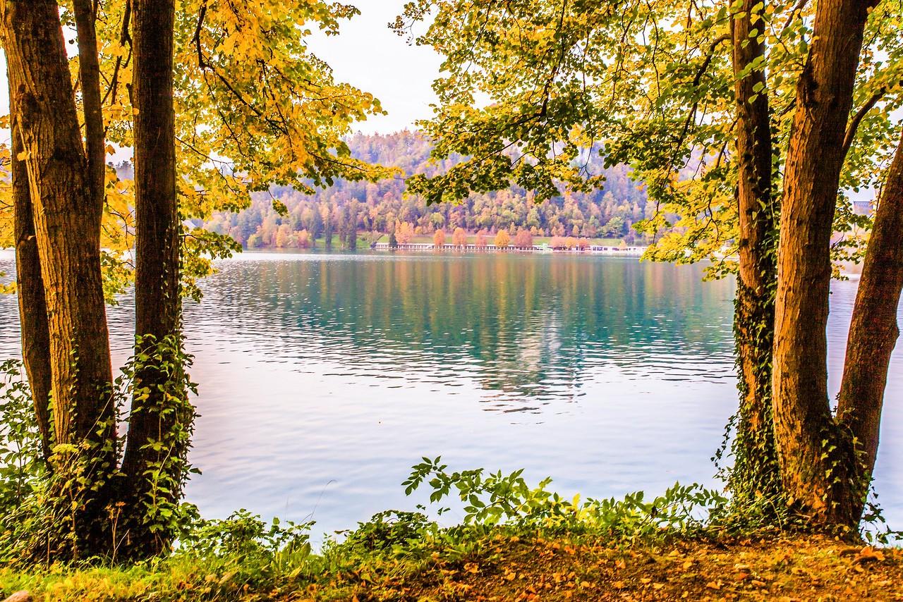斯洛文尼亚布莱德湖(Lake Bled),湖边看景_图1-10
