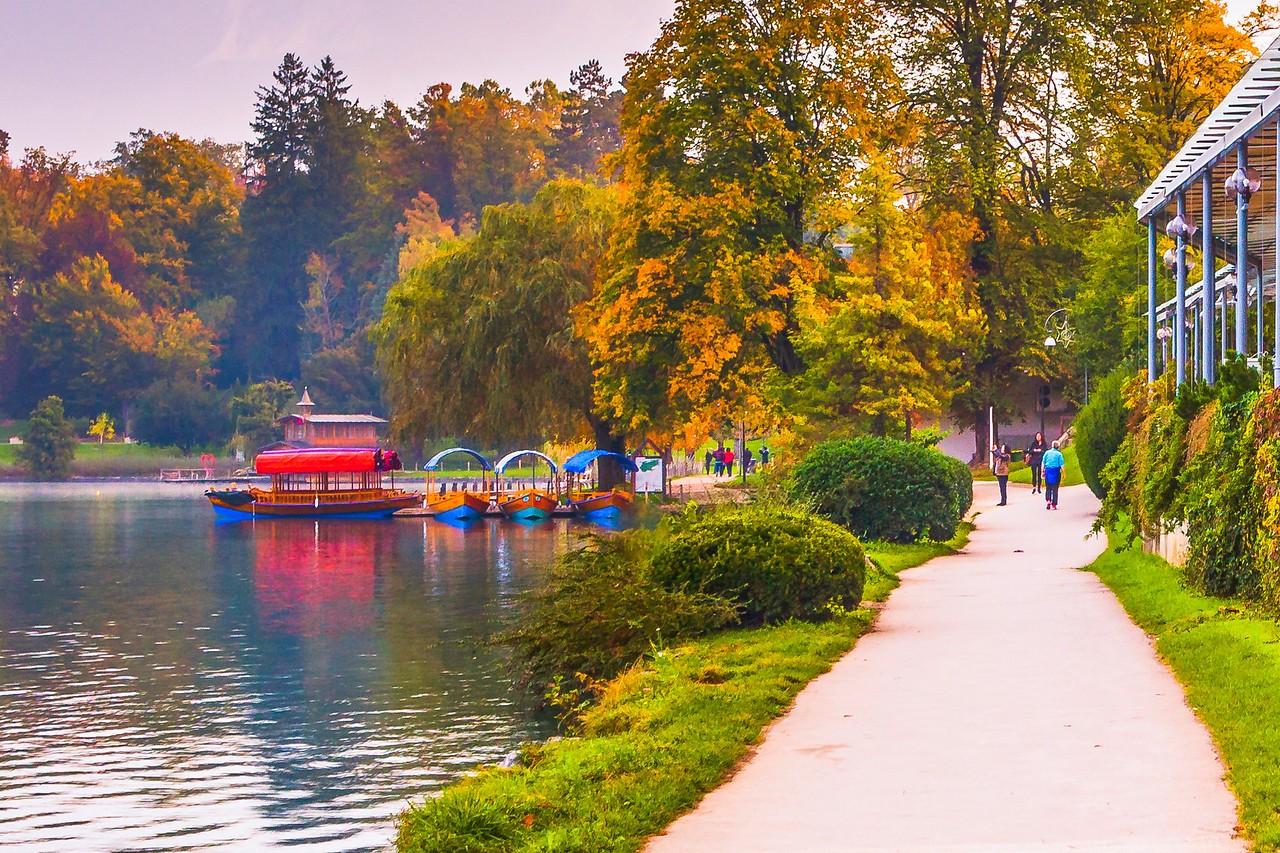 斯洛文尼亚布莱德湖(Lake Bled),湖边看景_图1-5