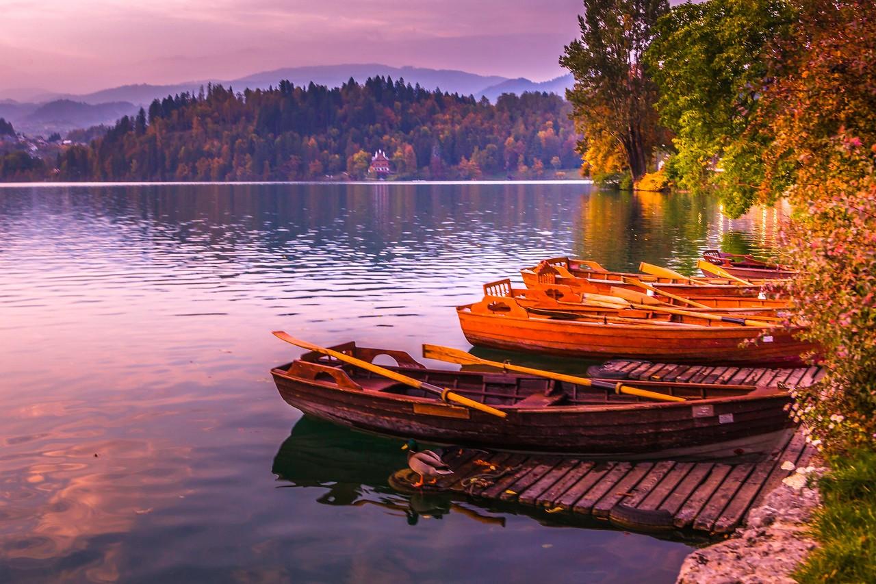 斯洛文尼亚布莱德湖(Lake Bled),湖边看景_图1-4