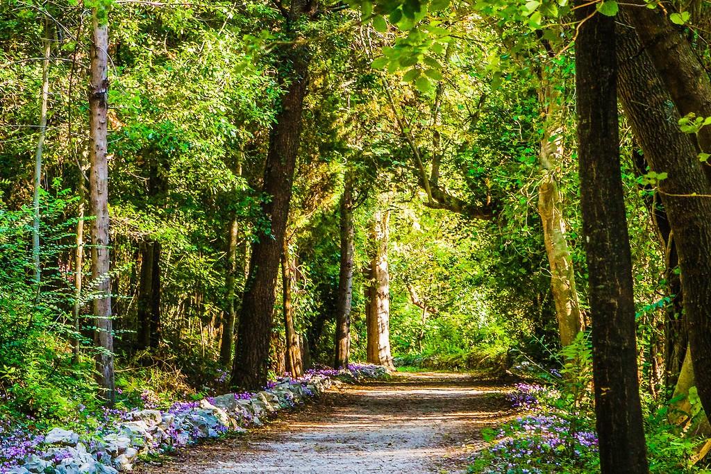 克罗地亚克尔卡国家公园(Krka National Park),阳光里的故事_图1-41