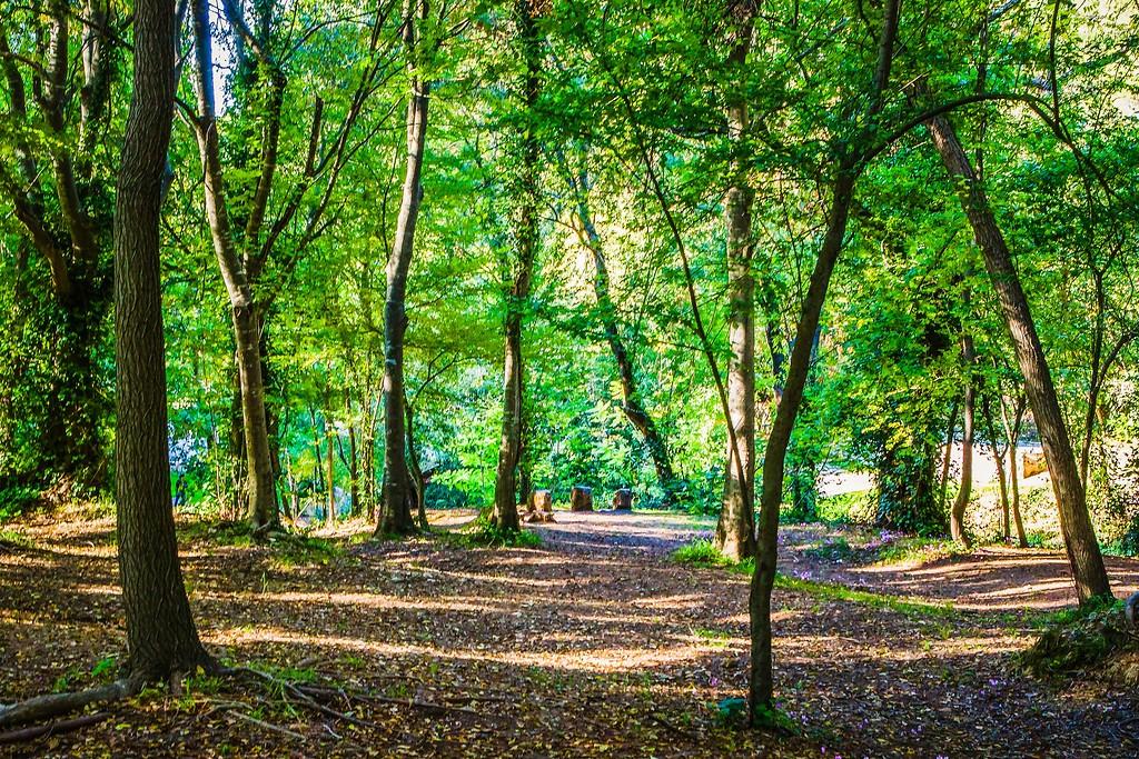 克罗地亚克尔卡国家公园(Krka National Park),阳光里的故事_图1-5