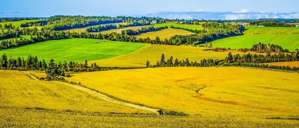 加拿大路途,自然与人文_图1-16