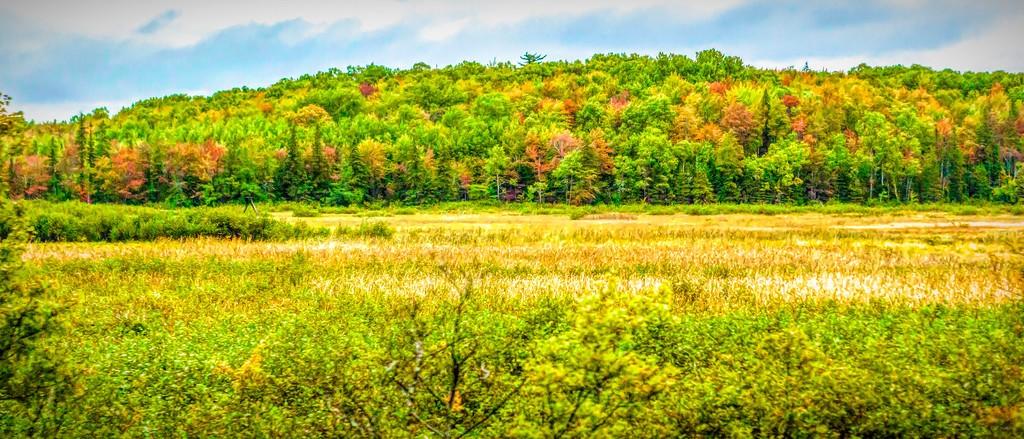 加拿大路途,自然与人文_图1-3