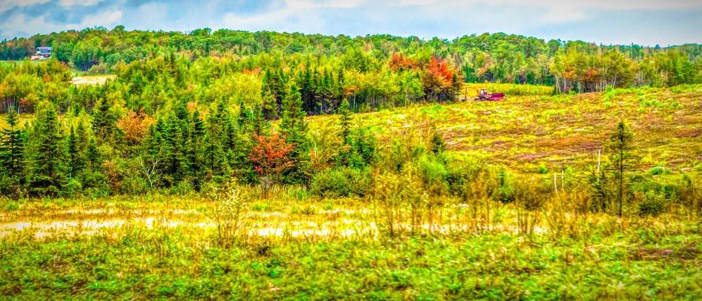 加拿大路途,自然与人文_图1-23