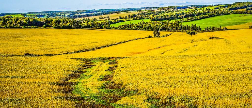 加拿大路途,自然与人文_图1-24