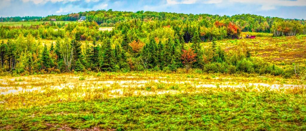 加拿大路途,自然与人文_图1-29