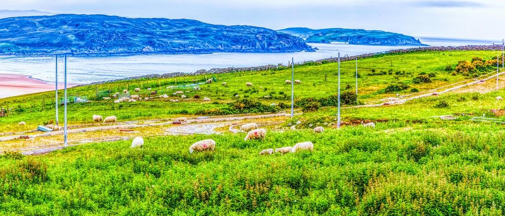 苏格兰美景,视觉享受_图1-16