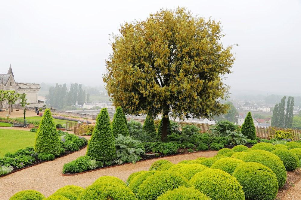 昂布瓦斯城堡_图1-9
