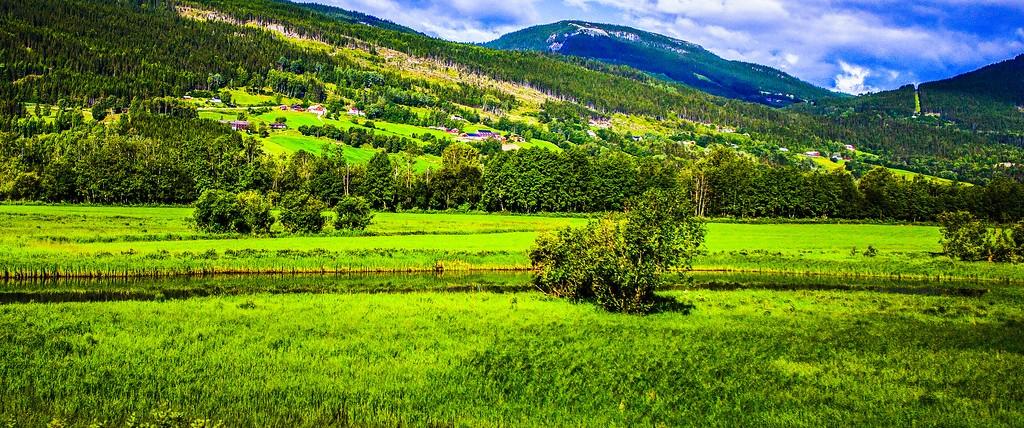 北欧风光,山林中的家_图1-36