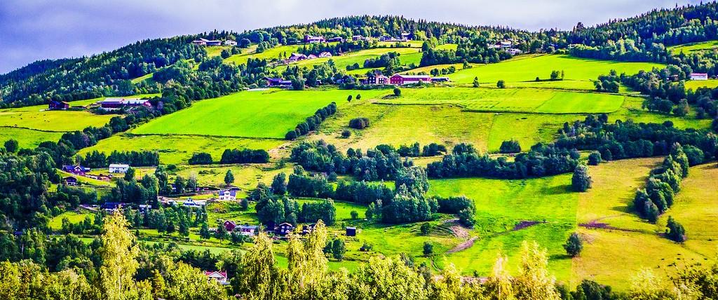 北欧风光,山林中的家_图1-34