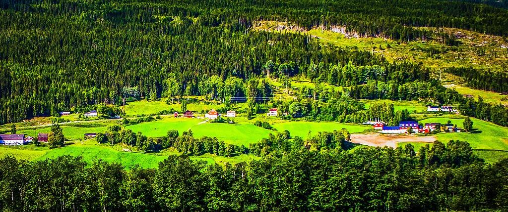 北欧风光,山林中的家_图1-38