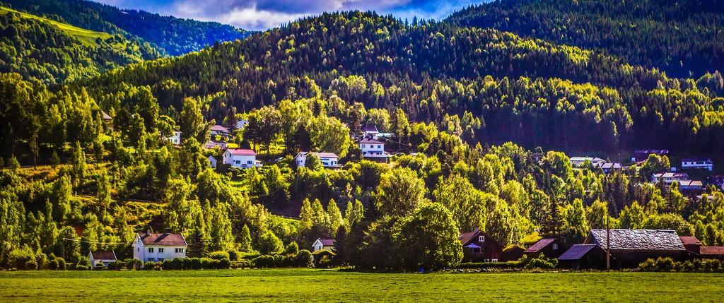 北欧风光,山林中的家_图1-40