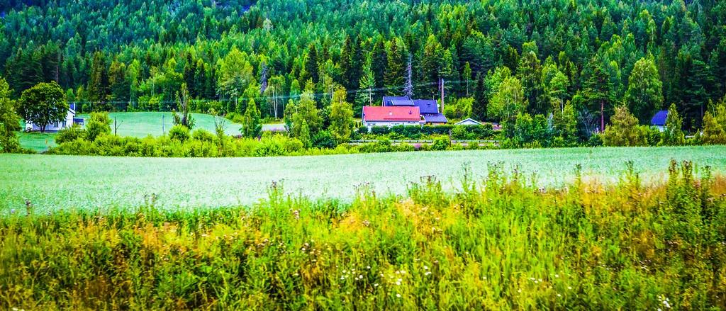 北欧风光,山林中的家_图1-27