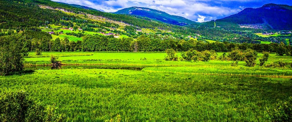 北欧风光,山林中的家_图1-26