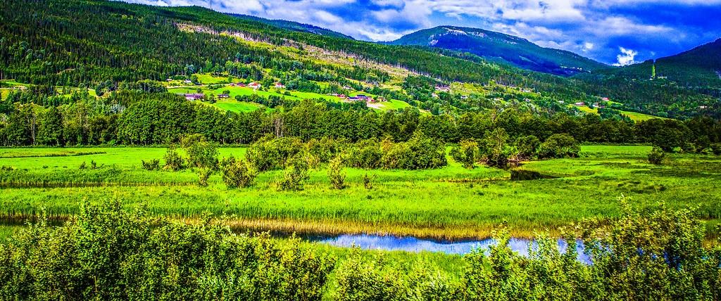 北欧风光,山林中的家_图1-21