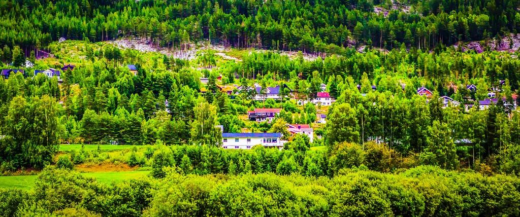 北欧风光,山林中的家_图1-25