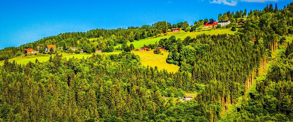 北欧风光,山林中的家_图1-4