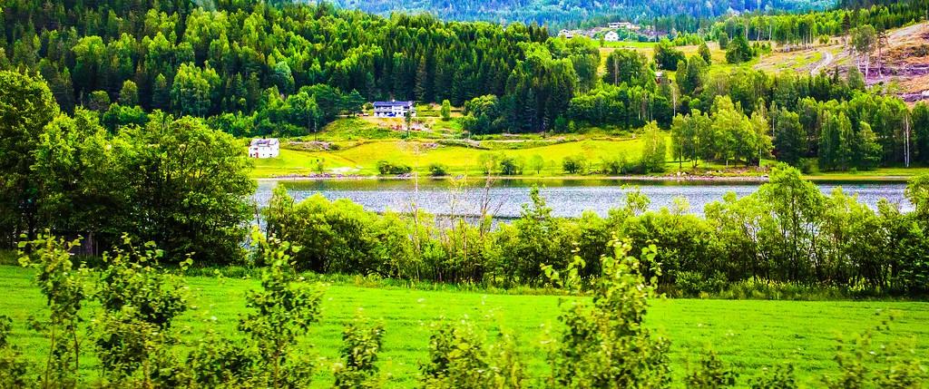 北欧风光,山林中的家_图1-20