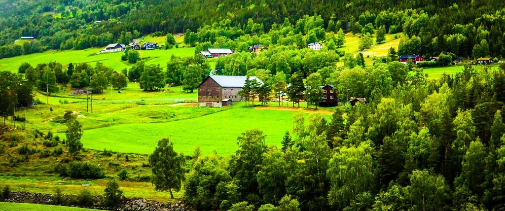 北欧风光,山林中的家_图1-18
