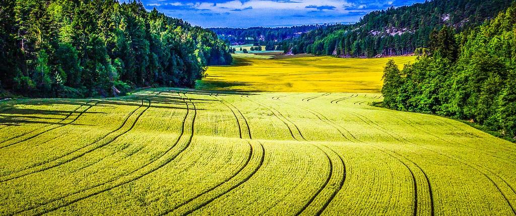 北欧风光,山林中的家_图1-24