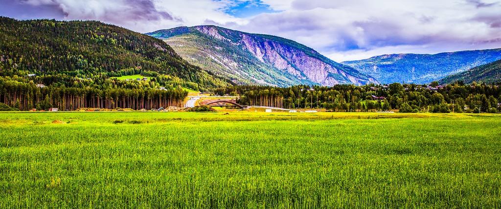 北欧风光,山林中的家_图1-3