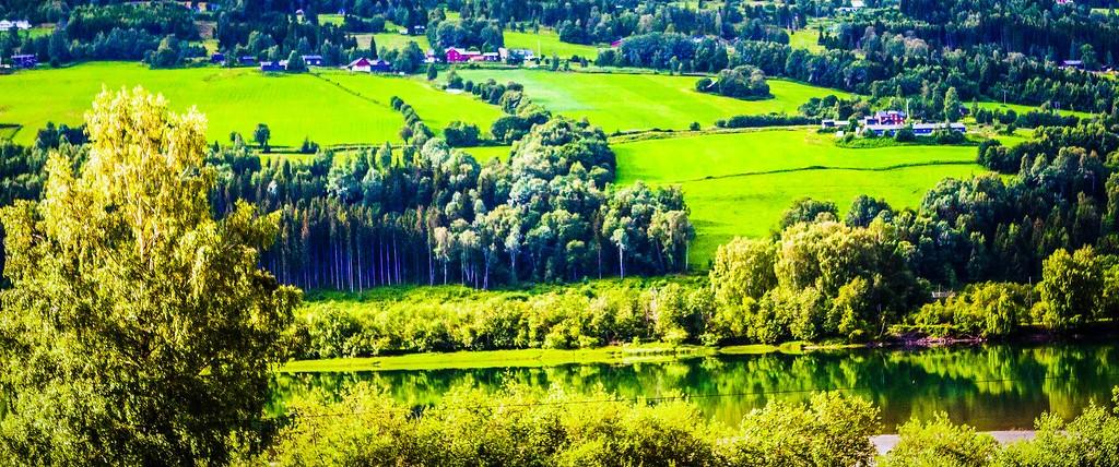 北欧风光,山林中的家_图1-8