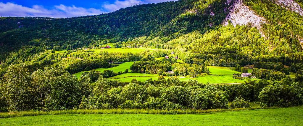 北欧风光,山林中的家_图1-12