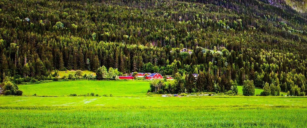 北欧风光,山林中的家_图1-13