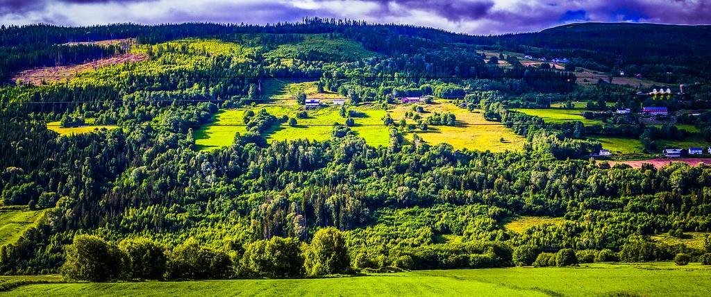 北欧风光,山林中的家_图1-9