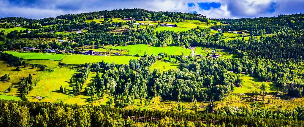 北欧风光,山林中的家_图1-15