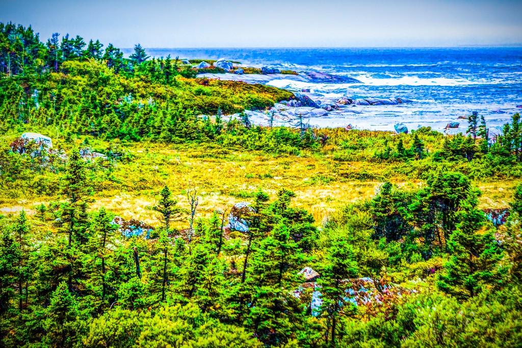 加拿大路途,走过小渔村_图1-20