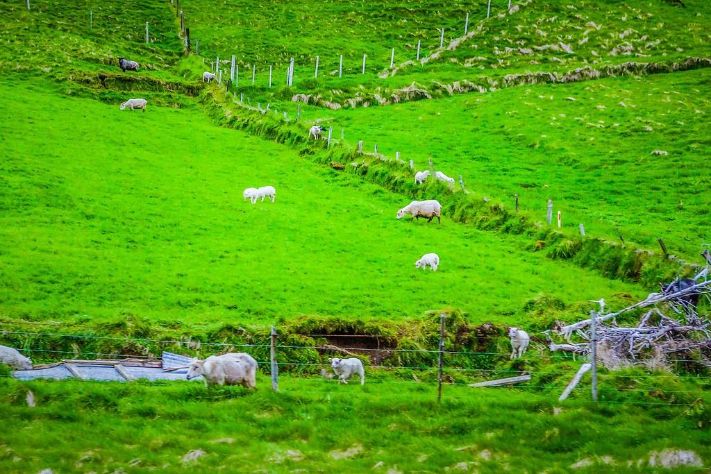 冰岛风采,一路欣赏_图1-21