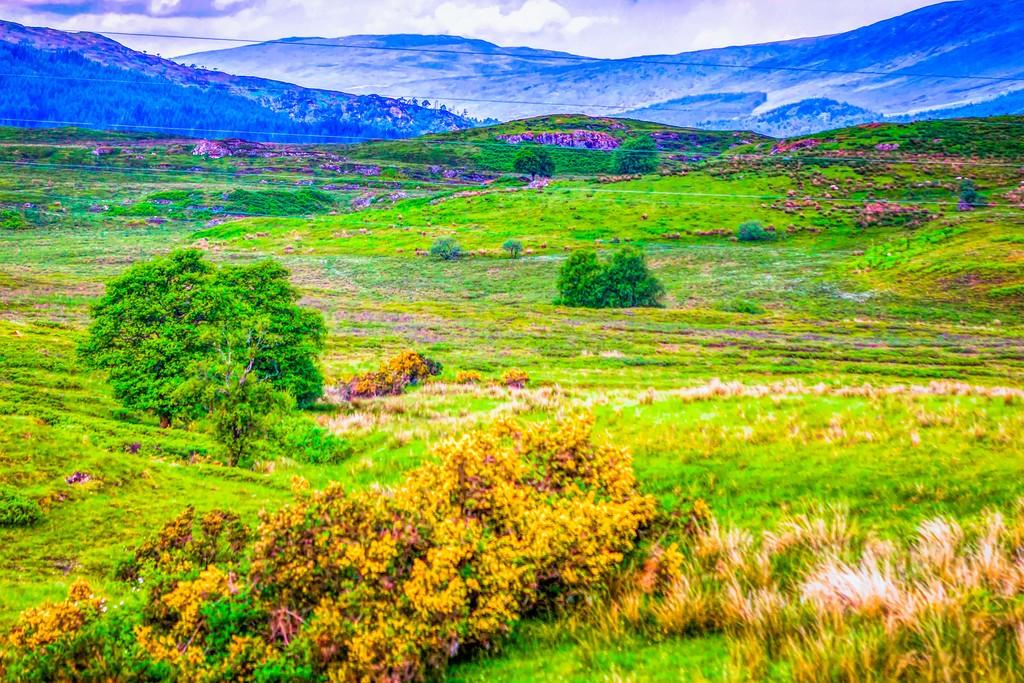 苏格兰美景,一眼望去_图1-33